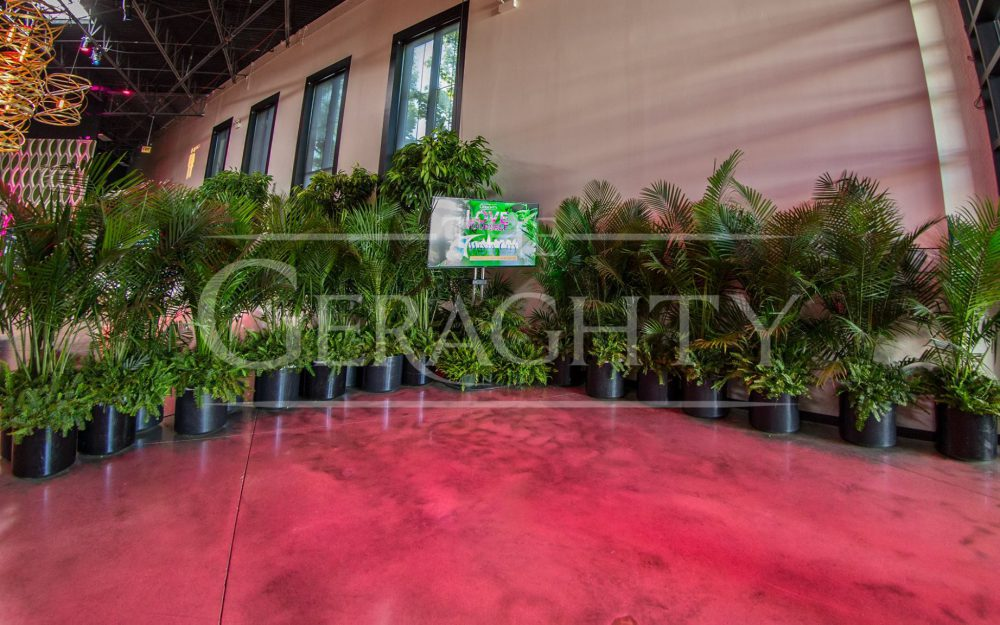 The Geraghty, Event Design, Sweatworking, Networking Event, Networking, Chicago Event, Chicago Venue, Venue, Plants, Greenery